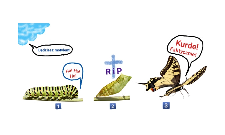Zmartwychwstanie-motyl