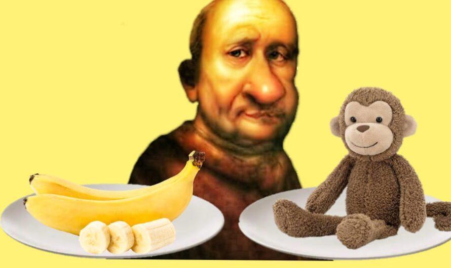 Małpy i banany
